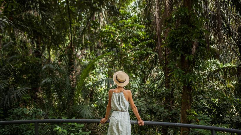 Semester im Ausland: Nach der Mensa in den Dschungel