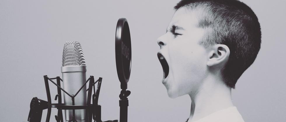 beat-the-prof-kommunikation-sprechwirkung-stimme
