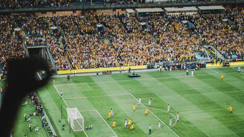 Beat the Prof : Wie viele Deutsche hängen zur WM eine Flagge auf?