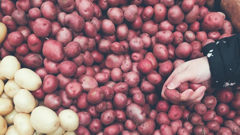 Studium und Finanzen: Das Geld, die Kartoffeln und ich