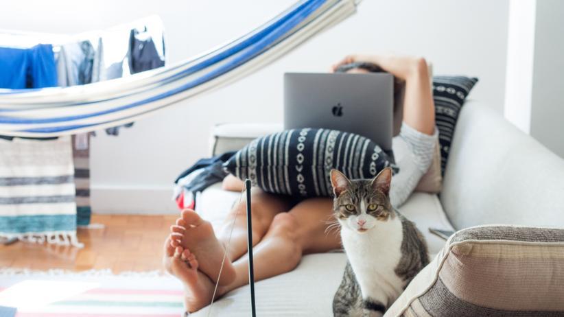 Beat the Prof : Wie viele Stunden verbringen wir alle zusammen täglich auf Netflix?