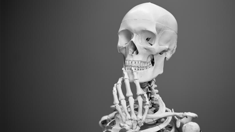 """Gesundheit und Psychologie: """"Fächer wie Biochemie, Physiologie und Anatomie haben es in sich"""""""