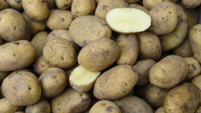 Kartoffeldebatte: Gehört die Kartoffel zu Deutschland?