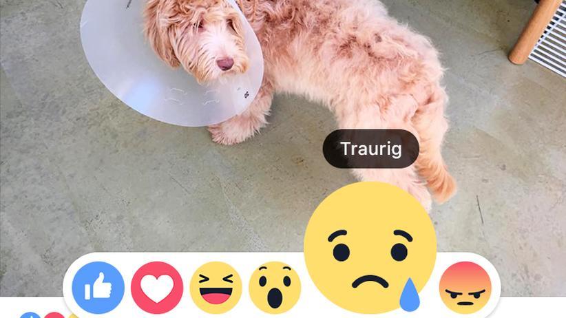 Reactions: Facebook hat seinen Like-Button um weitere Emotionen erweitert.