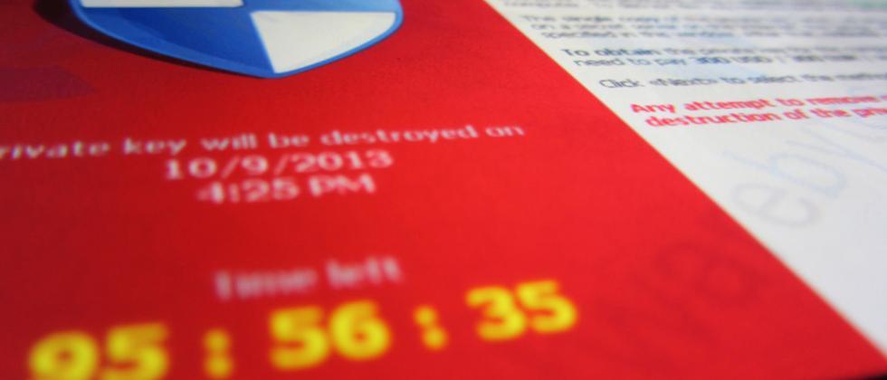 Die Ransomware Cryptolocker zeigt den Betroffenen einen Countdown.