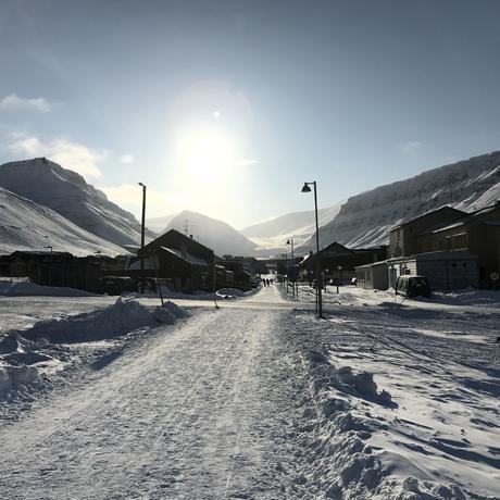 Hier konserviert es sich gut: Im arktischen Klima von Spitzbergen.