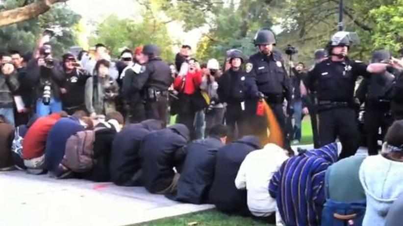 Occupy: Das Netz rächt sich am Pfefferspray-Cop