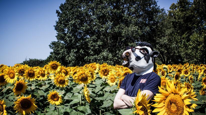 "Kansas nennt sich selbst ""Sunflower State""."
