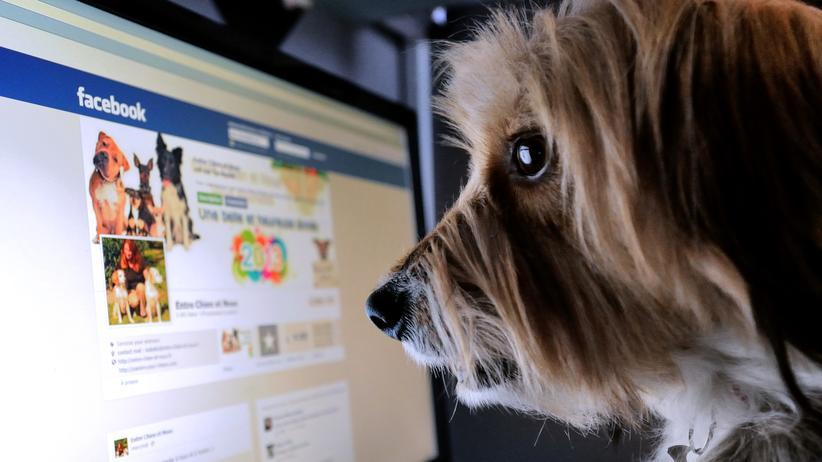 Auf Facebook weiß niemand, ob du ein Hund bist?