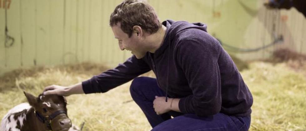 Wahlkampf an der Basis: Mark Zuckerberg in Texas