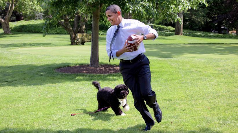 Instagram: Barack Obama spielt mit Hund Bo im Garten des Weißen Hauses.