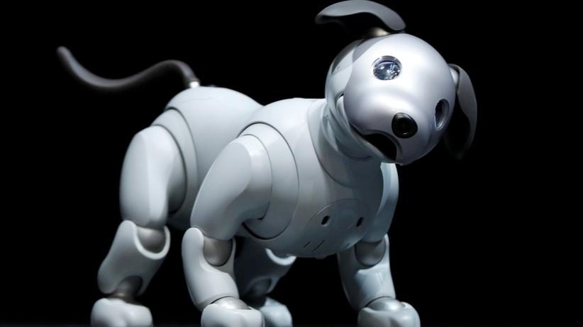Der Robo-Hund Aibo