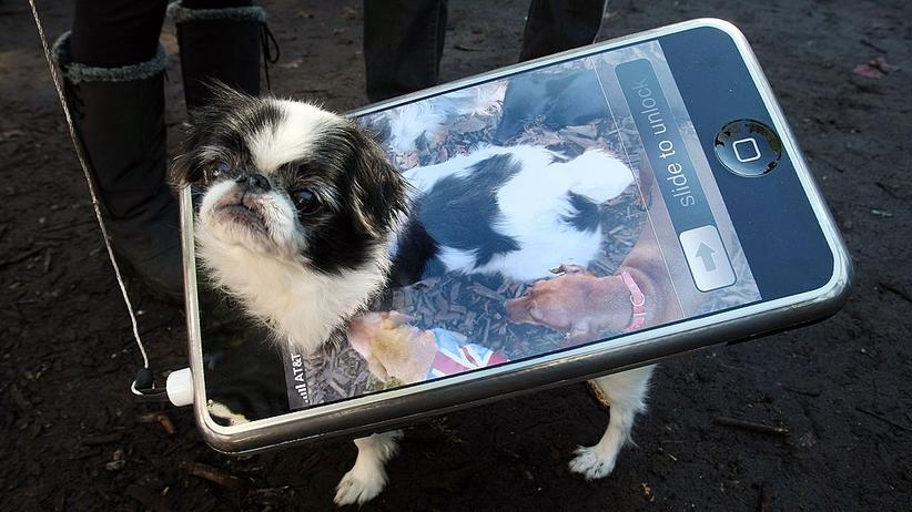 Manch iPhone-Besitzer ist auf den Hund gekommen.