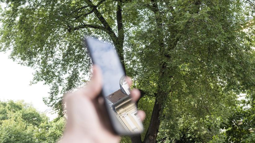 Verbraucherschutz: Mobiles Internet ist in Deutschland besonders teuer