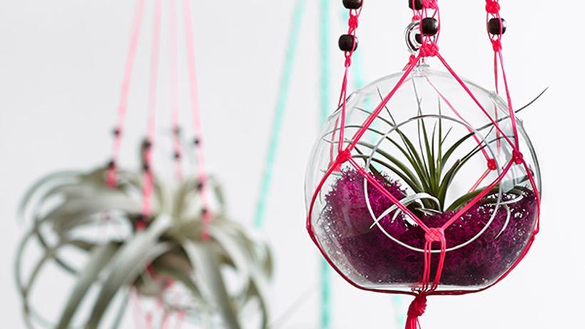 Macramé Alle Blumenampeln Auf Grün Zeit Online