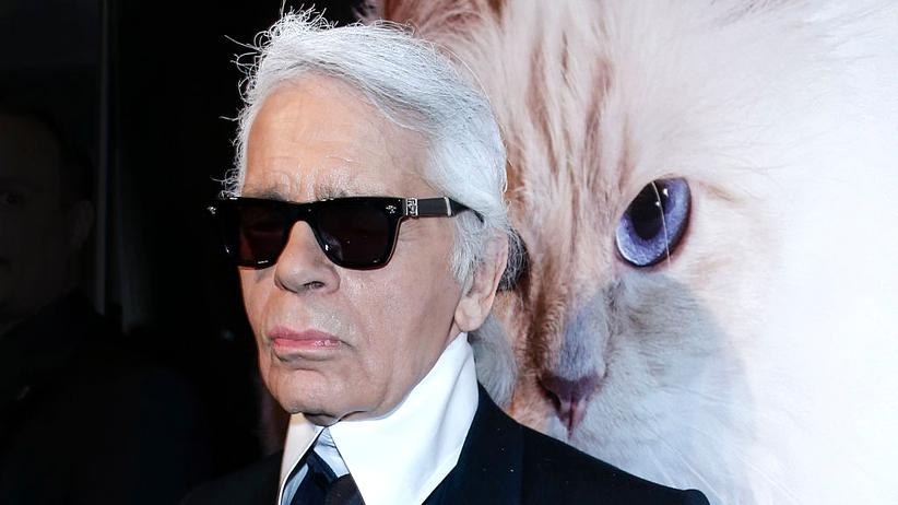 Tiere auf Instagram: Was macht diese Katze zum Weltstar?