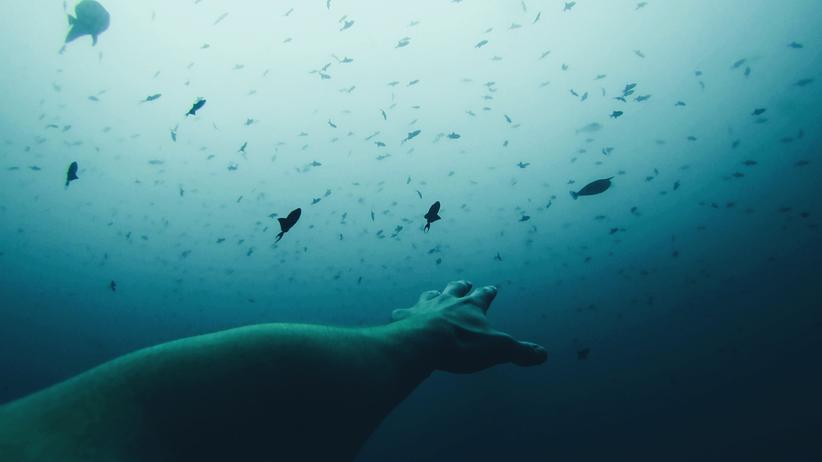 Apnoetauchen: Wie es wirklich ist, sechs Minuten lang nicht zu atmen