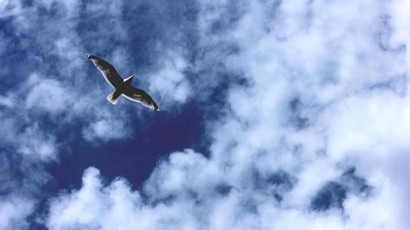 Ostsee: Das magische blaue Licht