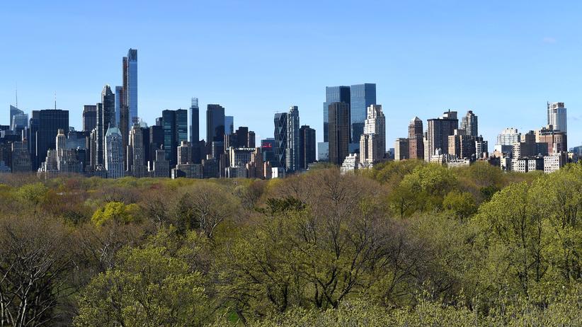 New York: Central Park und Skyline: Eine Landschaft aus Glas, Beton und Brownstones.