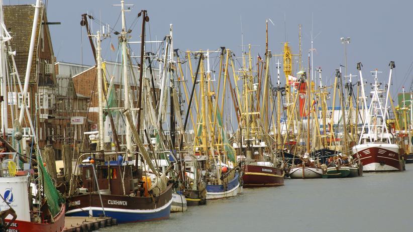 Nordsee: Fischerboote im Hafen von Cuxhaven