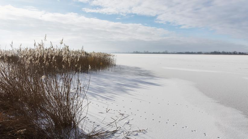 Uckermark: See, Natur, Stille