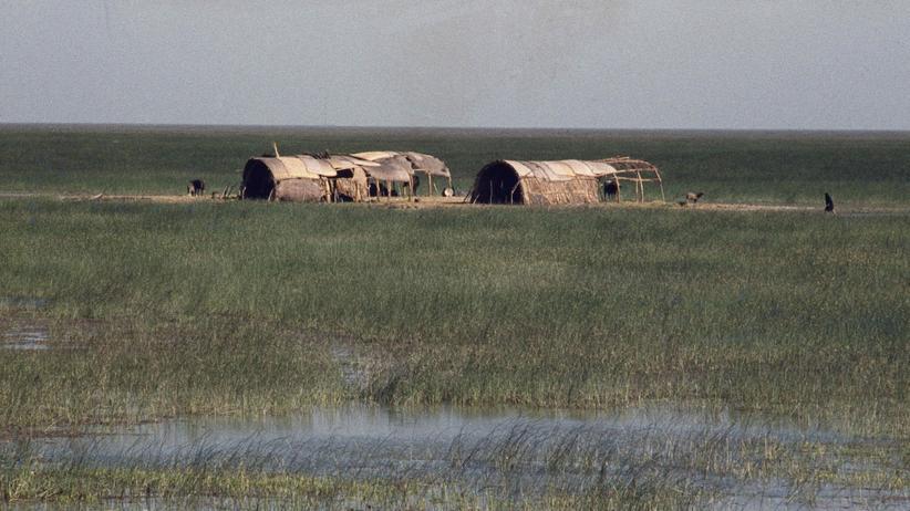 Irak: Hütten im Marschland von Tigris und Euphrat.