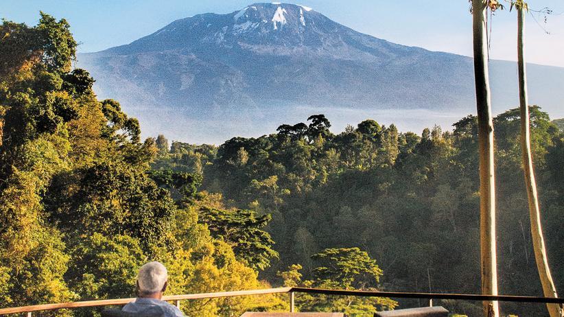 Kilimandscharo: Gipfel des Lebens