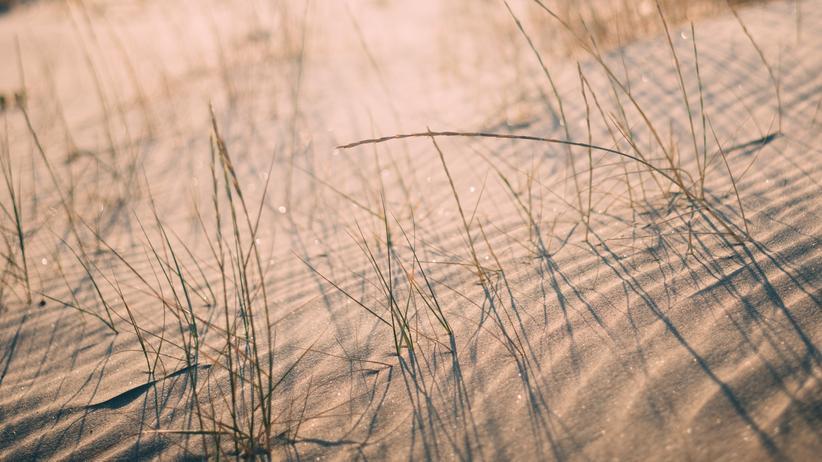 Strandglas: Erinnerungssplitter