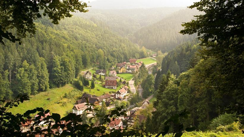 Kunsttour: Drei Tage im Schwarzwald