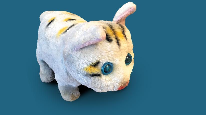 Mitbringsel: Die zerrupfte Katze