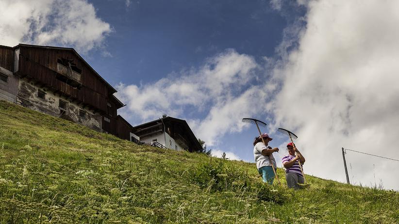 Bergbauernhof: Die Rechen-Aufgabe