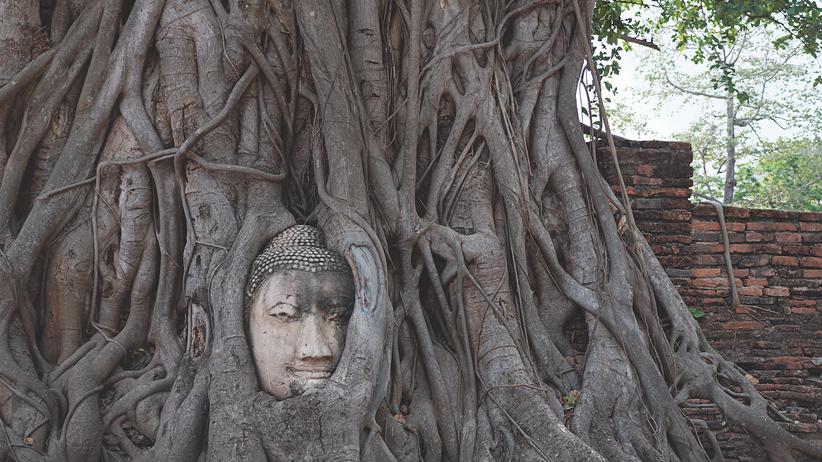 Ayutthaya: Der Schatz von Siam