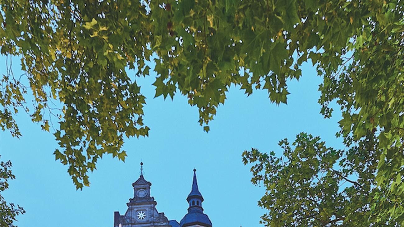 Braunschweig: Heinrichs gute Werke