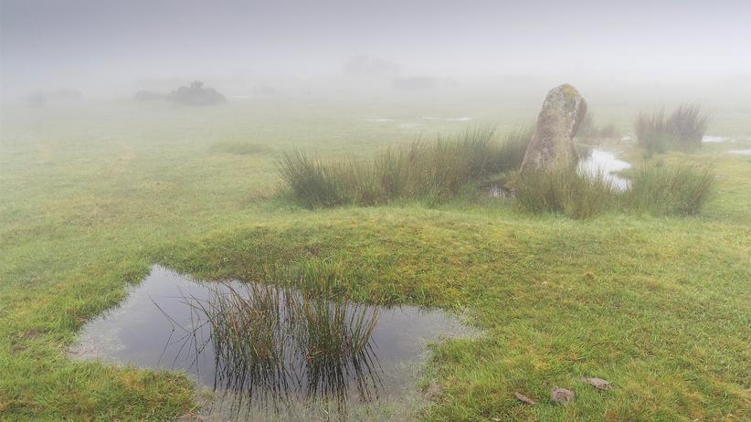 """Cornwall: Die Steinkreise The Hurlers ragen seit Jahrtausenden aus dem Bodmin Moor. Hier lag für du Maurier """"Cornwalls Rückgrat""""."""