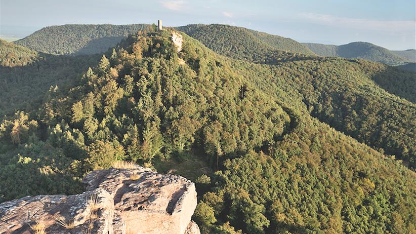 Pfalz: Schää dehääm