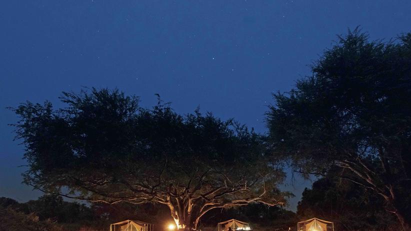 Safari: Himmelslichter über dem South Luangwa-Nationalpark, Nachtlichter im Camp, das am nächsten Morgen komplett abgebaut wird. Tiere sollen sich nicht daran gewöhnen, dass Menschen hier ihre Zelte aufschlagen.
