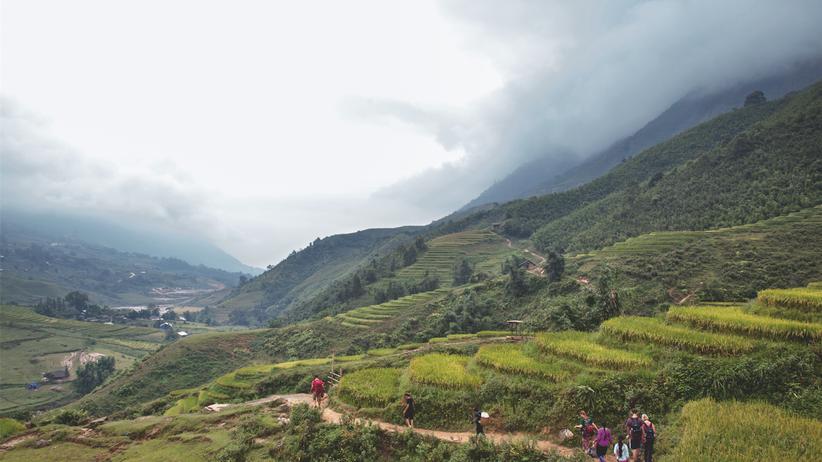Sapa: Grüne Wellen: Zwischen den Dörfern Ta Van und Ban Ho schlängelt sich der Pfad durch die Reisterrassen.