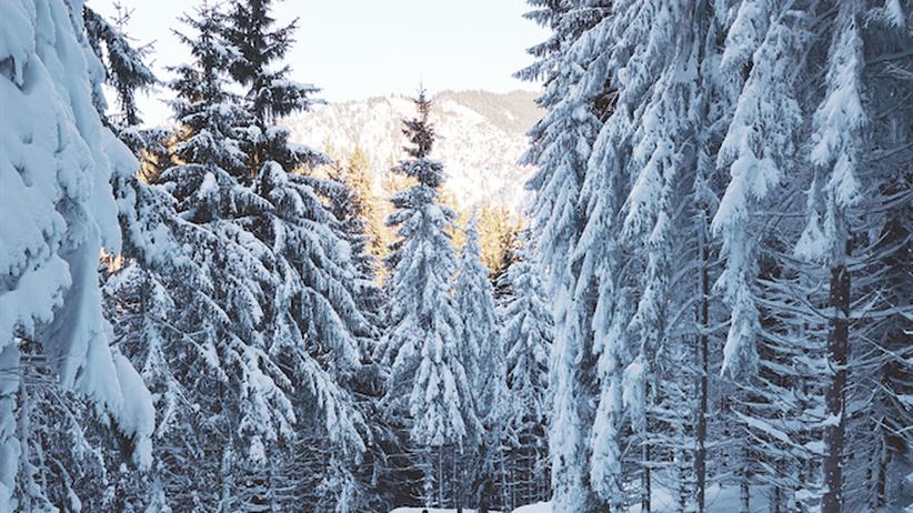 Skiurlaub: Das ist der Gipfel