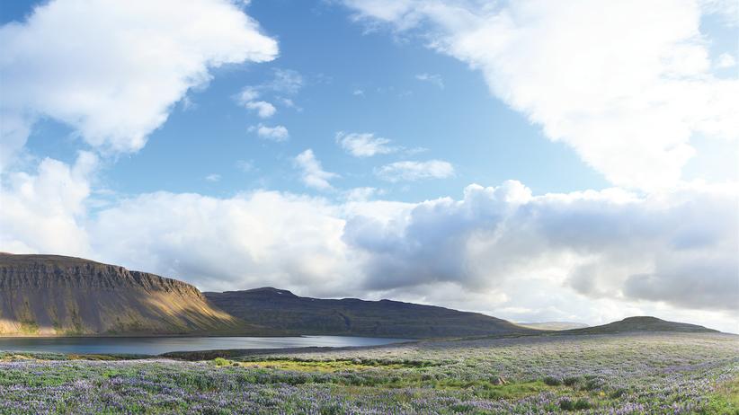 Westfjorde in Island: Extrem schön und unglaublich still