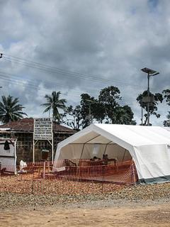 Ebola: How the virus came into this world | ZEIT ONLINE