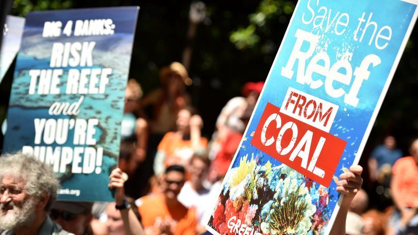 Great Barrier Reef: Kampf gegen die Kohlewüste