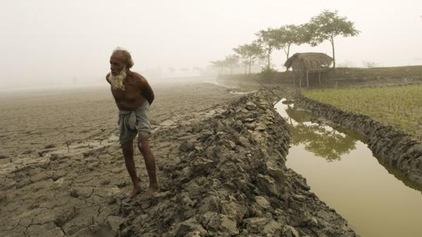 """Klimawandel: """"Am schlimmsten ist die Versalzung"""""""