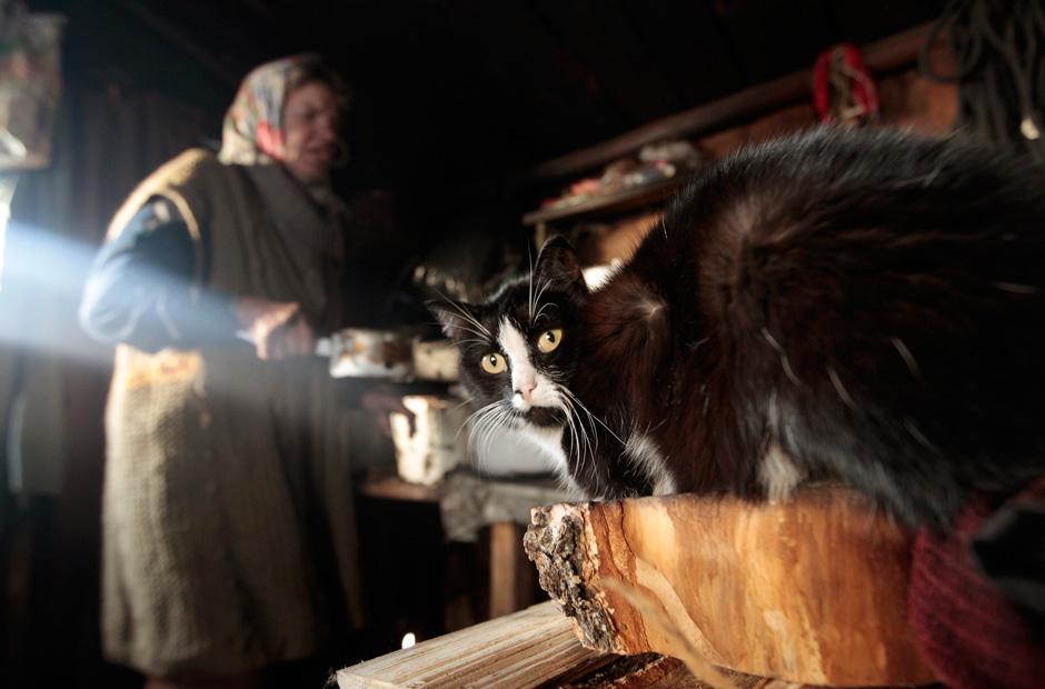 Leben Im Zelt Ohne Heizung Und Fließendes Wasser : Aussteiger in weißrussland ein leben im wald zeit online
