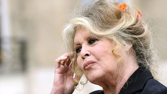 Brigitte Bardot (Archiv)