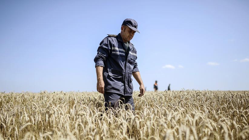 MH17: Suche nach Leichen am Absturzort des Fluges MH17 in der Ostukraine.