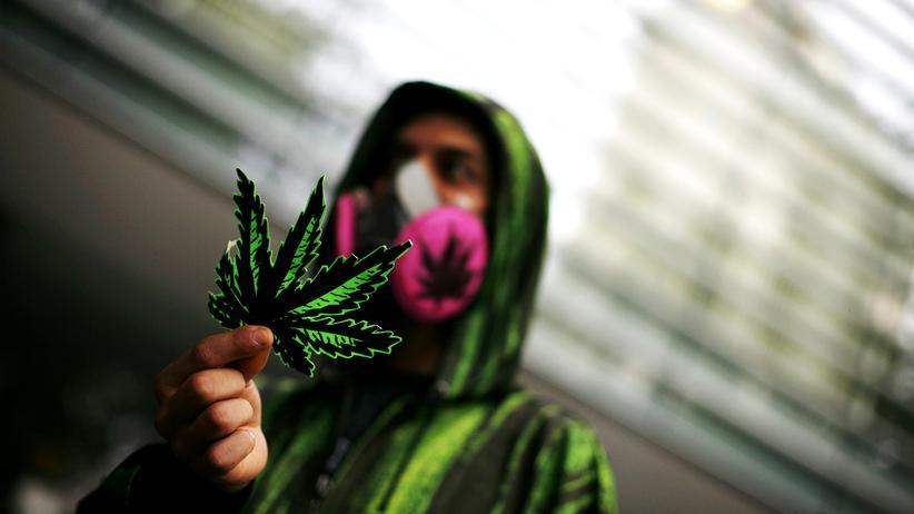 Drogen: Ein Aktivist in Mexiko-Stadt während einer Demonstration für die Legalisierung von Marijuana (Archiv)