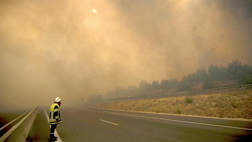 Waldbrände: Ein Feuerwehrmann im Norden der französischen Stadt Marseille
