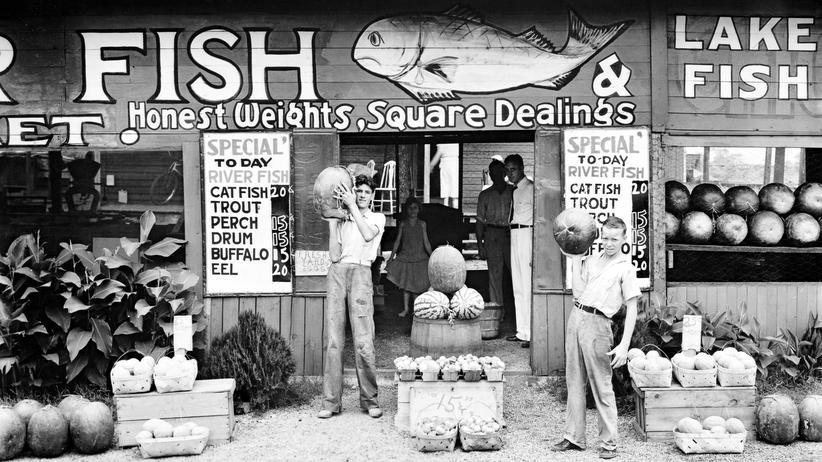 New Deal Photography: Ein Land im Staub