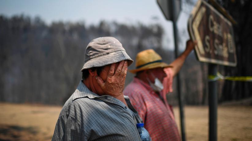 Waldbrand in Portugal: Diese portugiesischen Landwirte haben ihren Besitz durch den Brand verloren.