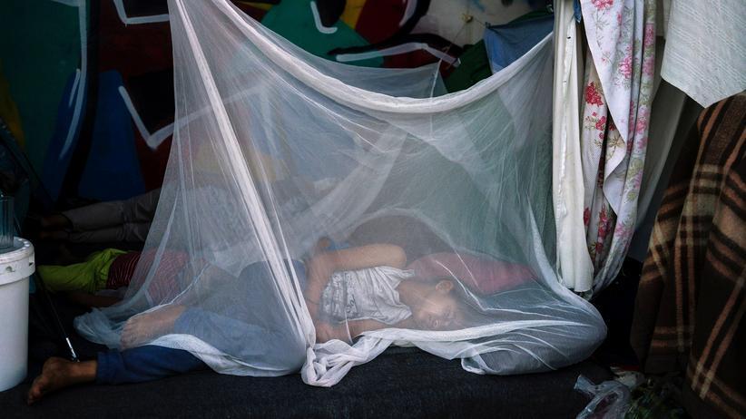 Flüchtlinge in Griechenland: Europarat kritisiert Zustände in Flüchtlingslagern